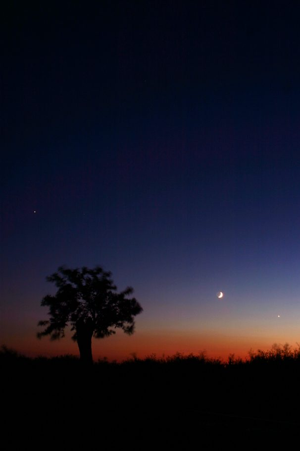 Moon-Venus-Jupiter Conjunction - Astrophotography by Alex Conu